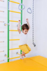 Подвижные игры для детей на шведской стенке