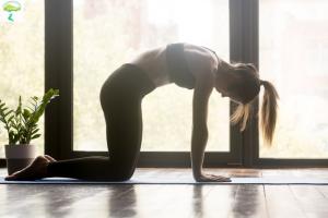 упражнение кошечка для спины