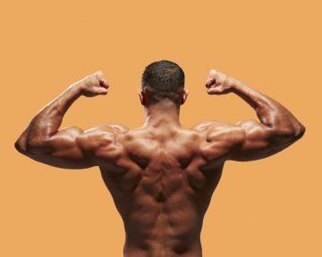 Как качать спину: устройство спины и упражнения в домашних условиях